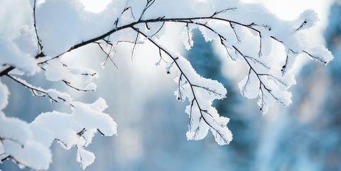 Kerst 2013: Soir de neige